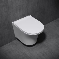Wall Hung D Shape Toilet With Soft Close Seat - Open Flush Rim Aachen 3109